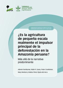¿Es la agricultura de pequeña escala realmente el impulsor principal de la deforestación en la Amazonía peruana?: Más allá de la narrativa predominante.