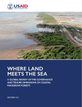 Where Land Meets the Sea: A Global Review of the Governance and Tenure Dimensions of Coastal Mangrove Forests - Report Brief