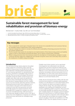 Sustainable forest management for land rehabilitation and provision of biomass-energy