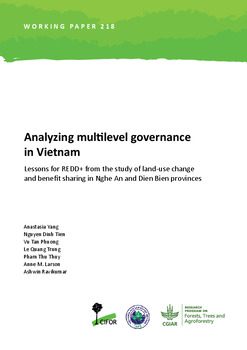 Analyzing multilevel governance in Vietnam: Lessons for REDD+ from the study of land-use change and benefit sharing in Nghe An and Dien Bien provinces