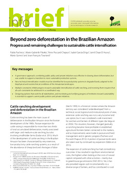 Beyond zero deforestation in the Brazilian Amazon: Progress and remaining challenges to sustainable cattle intensification