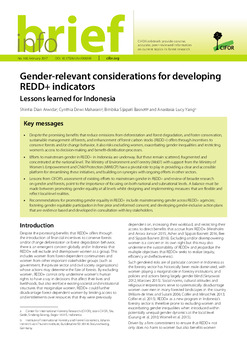 Gender relevant considerations for developing REDD+ indicators: Lessons learned for Indonesia