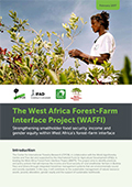 The West Africa Forest-Farm Interface Project (WAFFI): Strengthening smallholder food security, income and gender equity within West Africa's forest-farm interface