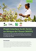 Projet Interface forêt-ferme en Afrique de l'Ouest (WAFFI): Renforcement de la sécurité alimentaire, des revenus et de l'équité des genres au sein de l'interface forêt-ferme en Afrique de l'Ouest