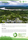 Why peatlands matter