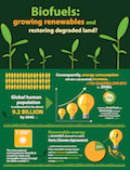 Biofuels: Growing renewables and restoring degraded land?