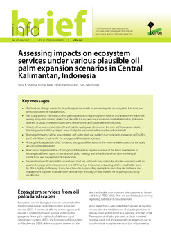Assessing impacts on ecosystem services under various plausible oil palm expansion scenarios in Central Kalimantan, Indonesia