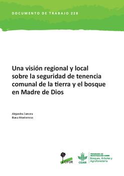 Una visión regional y local sobre la seguridad de tenencia comunal de la tierra y el bosque en Madre de Dios