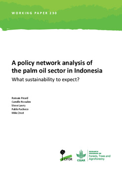 A policy network analysis of the palm oil sector in Indonesia: What sustainability to expect?
