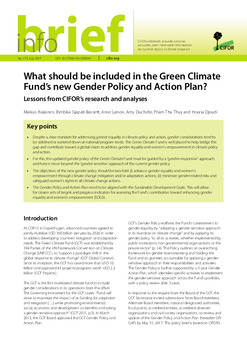 What should be included in the Green Climate Fund's new Gender Policy and Action Plan?: Lessons from CIFOR's research and analyses