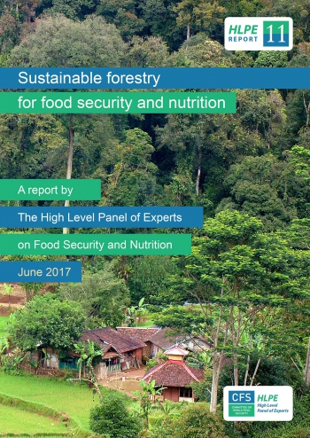 Sustainable forestry for food security and nutrition: A report by the High Level Panel of Experts on Food Security and Nutrition