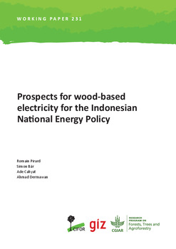 Prospects for wood-based electricity for the Indonesian National Energy Policy