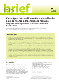 Current practices and innovations in smallholder palm oil finance in Indonesia and Malaysia: Long-term financing solutions to promote sustainable supply chains