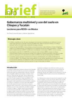 Gobernanza multinivel y uso del suelo en Chiapas y Yucatán