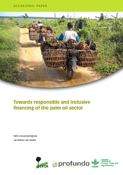 Towards responsible and inclusive financing of the palm oil sector