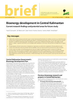 Bioenergy development in Central Kalimantan: Current research findings and potential areas for future study