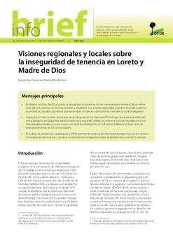 Visiones regionales y locales sobre la inseguridad de tenencia en Loreto y Madre de Dios