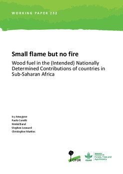 Small flame but no fire: Wood fuel in the (Intended) Nationally Determined Contributions of countries in Sub-Saharan Africa