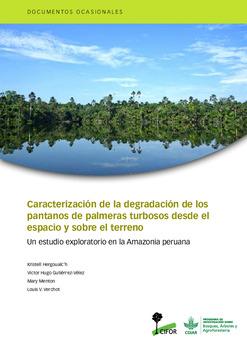Caracterización de la degradación de los pantanos de palmeras turbosos desde el espacio y sobre el terreno: Un estudio exploratorio en la Amazonia peruana