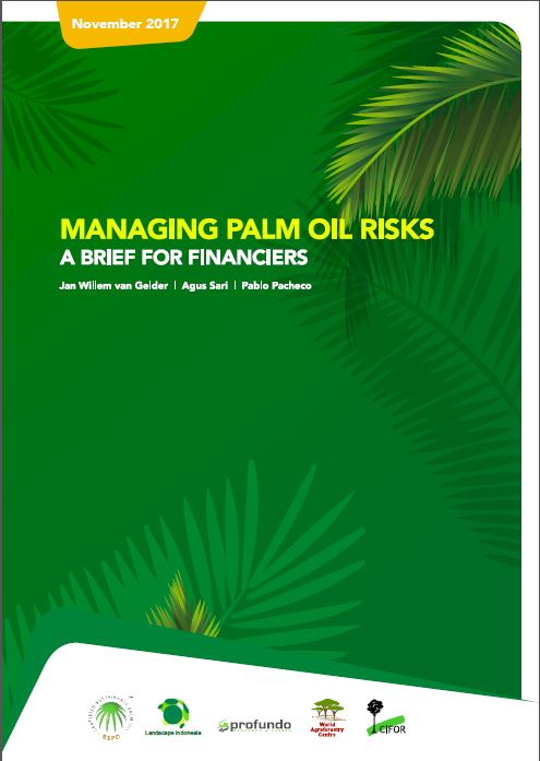 Managing palm oil risks: A Brief for financiers