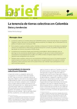 La tenencia de tierras colectivas en Colombia: Datos y tendencias