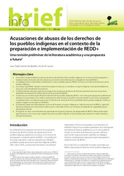 Acusaciones de abusos de los derechos de los pueblos indígenas en el contexto de la preparación e implementación de REDD+: Una revisión preliminar de la literatura académica y una propuesta a futuro