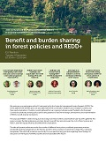 Benefit and burden sharing in forest policies and REDD+