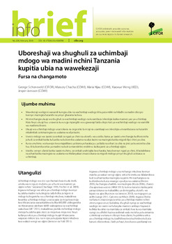 Uboreshaji wa shughuli za uchimbaji mdogo wa madini nchini Tanzania kupitia ubia na wawekezaji: Fursa na changamoto