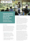 Integrating REDD+ with development goals at the landscape level: The role of multistakeholder forums in subnational jurisdictions