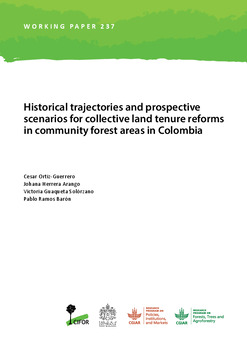 Historical trajectories and prospective scenarios for collective land tenure reforms in community forest areas in Colombia