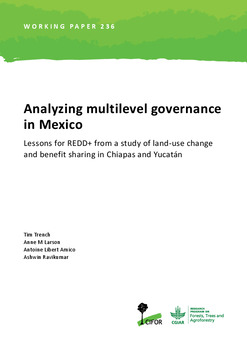Analyzing multilevel governance in Mexico: Lessons for REDD+ from a study of land-use change and benefit sharing in Chiapas and Yucatán