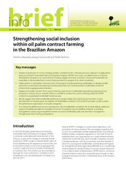 Strengthening social inclusion within oil palm contract farming in the Brazilian Amazon