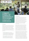 A integração de REDD+ com  os objetivos do desenvolvimento em nível da paisagem: O papel dos comitês de múltiplos atores nas jurisdições subnacionais