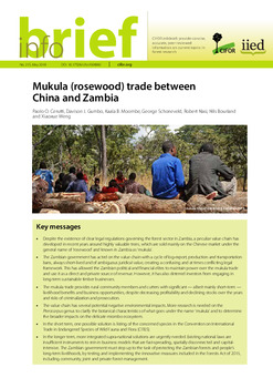 Mukula (rosewood) trade between China and Zambia