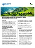 Exploring guiding elements of transformational change in integrated landscape management