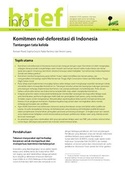 Komitmen nol-deforestasi di Indonesia: Tantangan tata kelola