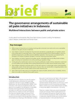 The governance arrangements of sustainable oil palm initiatives in Indonesia: Multilevel interactions between public and private actors