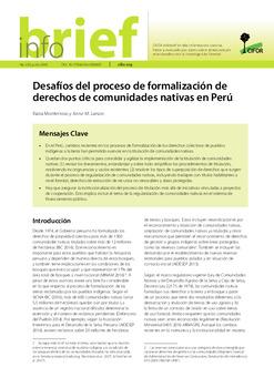 Desafíos del proceso de formalización de derechos de comunidades nativas en Perú