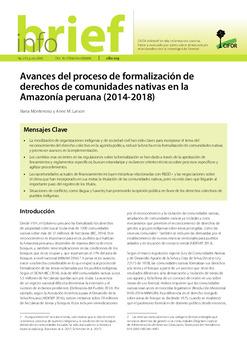 Avances del proceso de formalización de derechos de comunidades nativas en la Amazonía peruana (2014-2018)