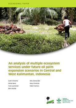 An analysis of multiple ecosystem services under future oil palm expansion scenarios in Central and West Kalimantan, Indonesia