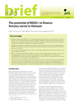 The potential of REDD+ to finance forestry sector in Vietnam