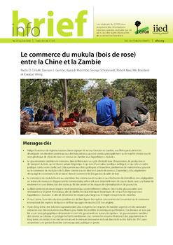 Le commerce du mukula (bois de rose) entre la Chine et la Zambie