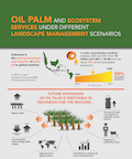 Oil palm and ecosystem services under different landscape management scenarios