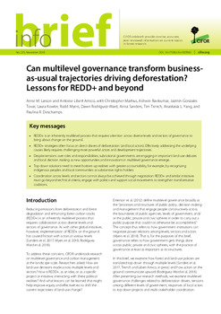 Can multilevel governance transform business-as-usual trajectories driving deforestation? Lessons for REDD+ and beyond