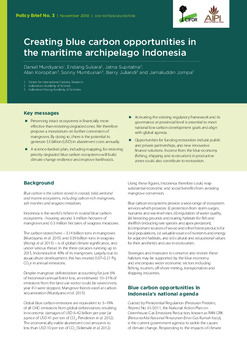 Creating blue carbon opportunities in the maritime archipelago Indonesia