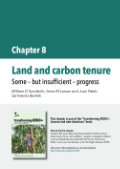 Land and carbon tenure: Some – but insufficient – progress