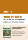 Forests and carbon: The impacts of local REDD+ initiatives