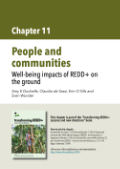 People and communities: Well-being impacts of REDD+ on the ground