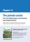 The private sector: Can zero deforestation commitments save tropical forests?