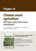 Climate-smart agriculture: Will higher yields lead to lower deforestation?